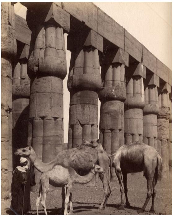 Photo Circa 1880