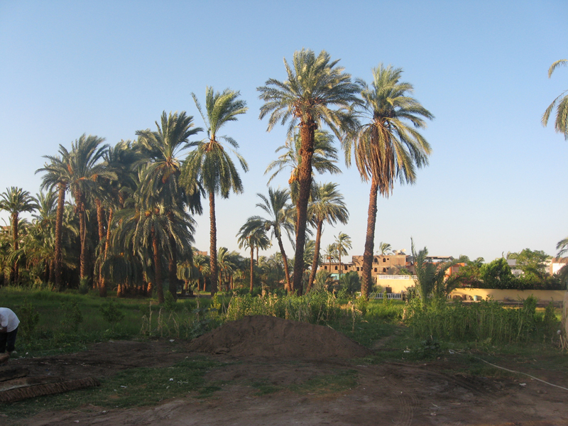Westbank - Campagne