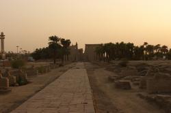 Le dromos du temple de Louxor - Fevrier 2012