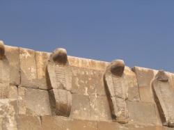 reconstitution du mur aux cobras