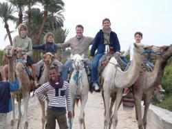 Balade en Dromadaires le long du Nil.