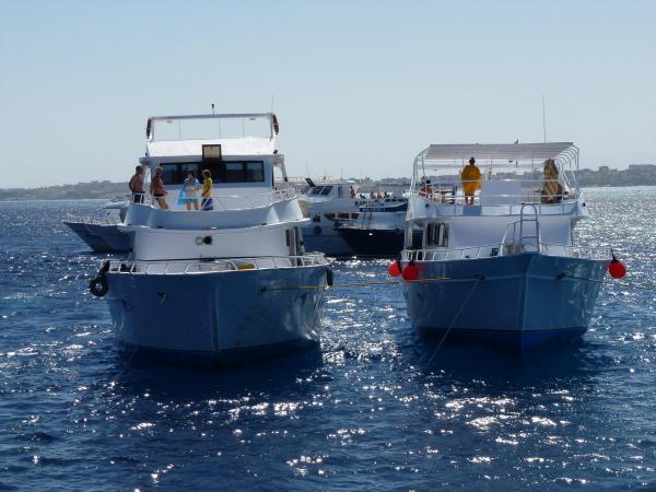 Les bateaux de plongeurs
