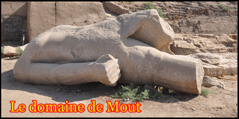 Domaine de Mout