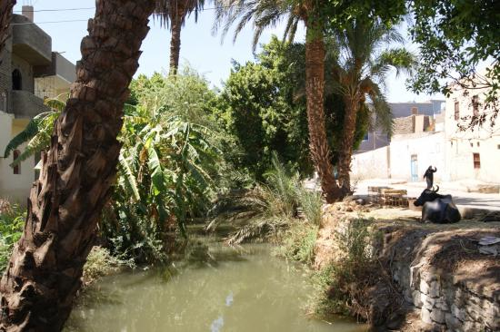 Le canal entre la route et le caravansérail
