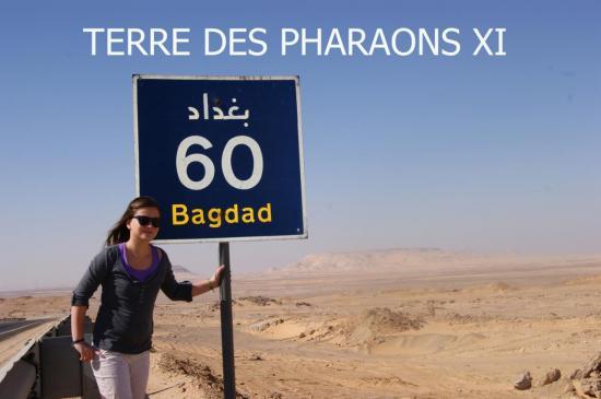 TERRE DES PHARAONS XI